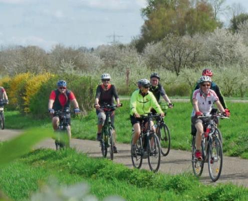 Gruppe von Radlern auf dem Fahrrad in der Natur